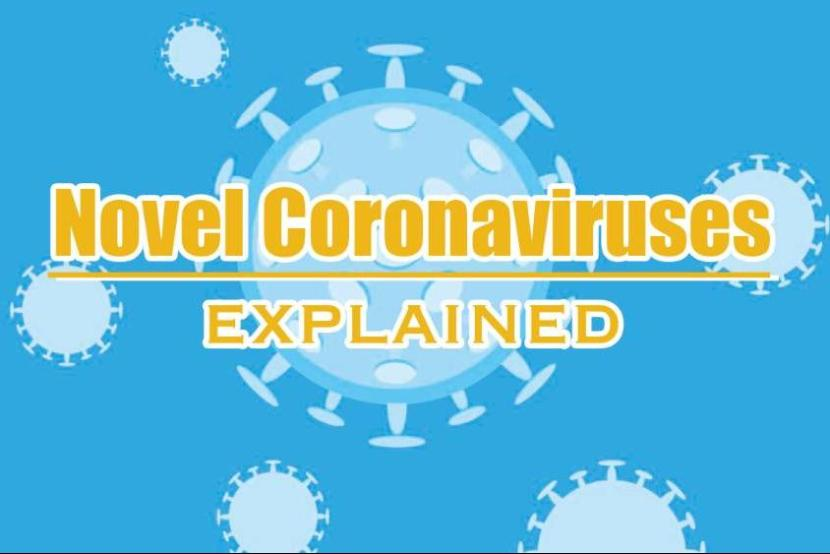 Battling the novel coronavirus: What we know so far