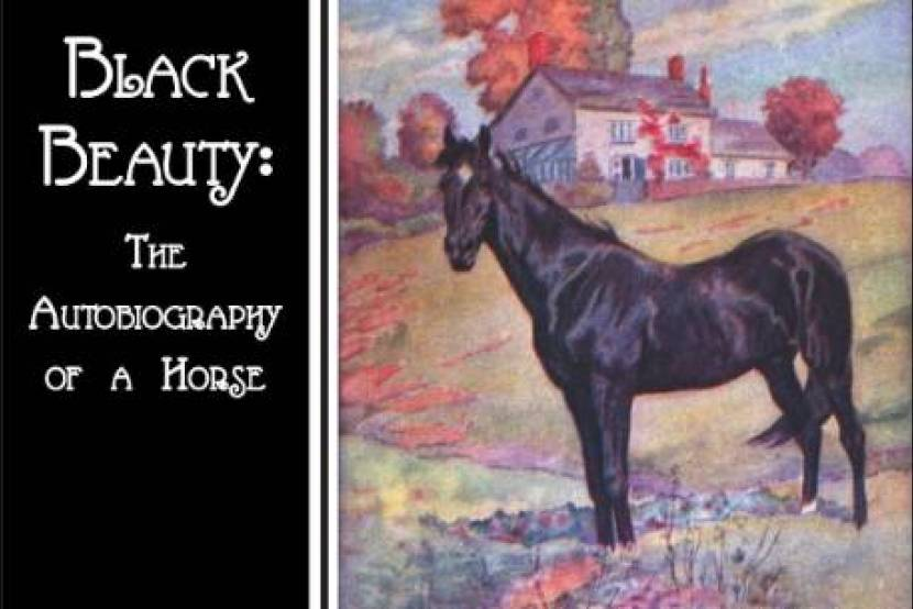 Black Beauty (The Autobiography of a Horse)